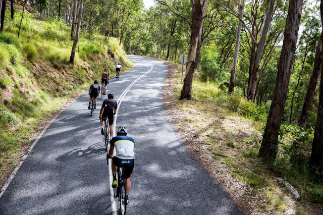 Soigneur Summer HC // Yarra Ranges // February 18-21 2016